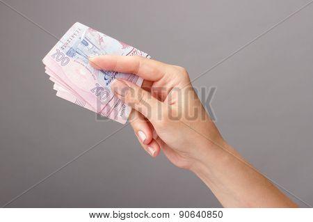 Female Hand Holding Money Bills