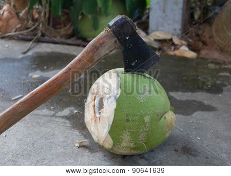 Peeling Coconut
