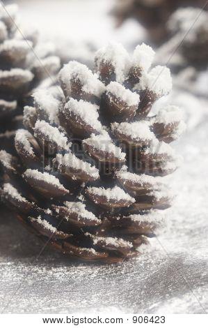 Christmas Strobile