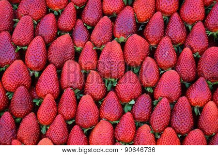 Fresh Strawberries Fruit Background