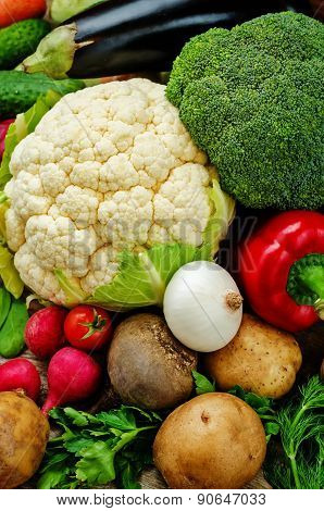 Vegetables. Tomatoes, Potatoes, Eggplant, Zucchini, Onion, Carrot, Radish, Cucumber, Tomato, Peppers
