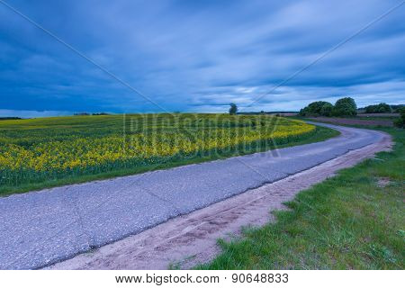 Rural Destroyed Asphalt Road In Calm Countryside