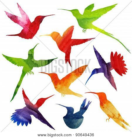 Hummingbirds Silhouette. watercolor illustration