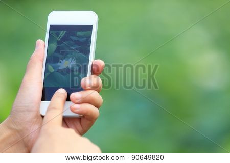 young woman taking photo with smart phone