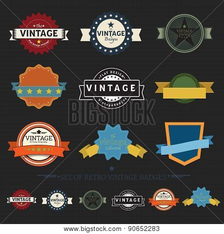 Collection of Retro Vintage Badges flat design styled labels