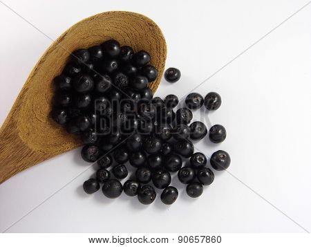 Jambolan plum or Java plum
