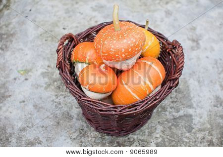 Looking Down On A Wicker Basket Full Of Orange Decorative Pumpkins (cucurbita Pepo)