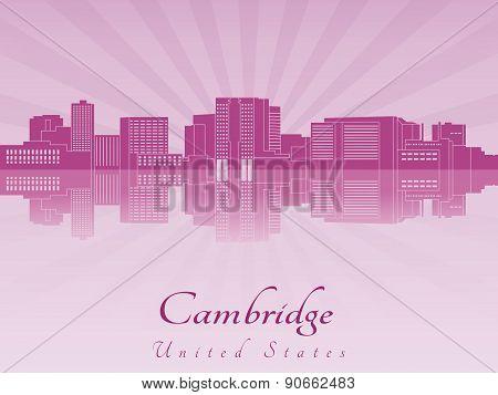 Cambridge Ma Skyline In Purple Radiant Orchid