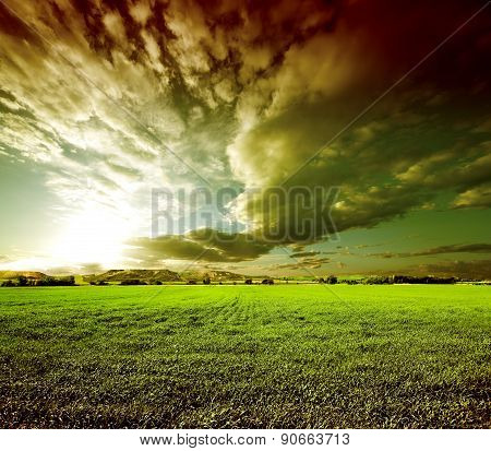 Sunset green fields landscape.