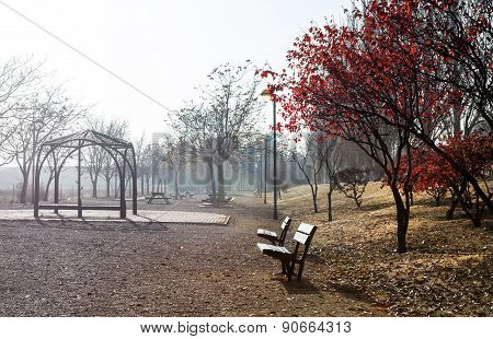 Park bench,autumn scenary