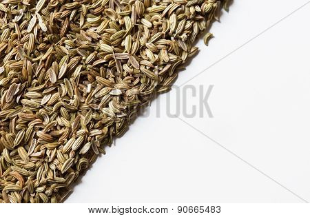 Seeds Of Fennel