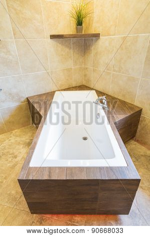 Unique Bathtub In The Residence