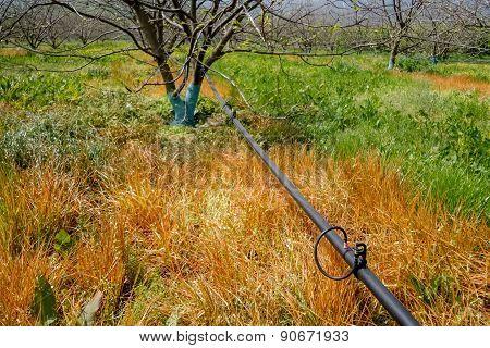 Irrigation System In Garden