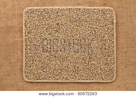 Frame Made Of Rope With Rye Grains On Sackcloth
