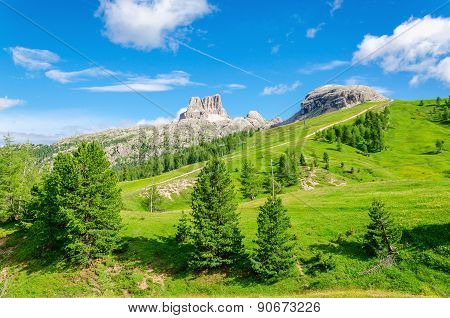 Mountain landscape with green pines, Italy