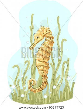 Illustration of a Golden Seahorse Swimming About