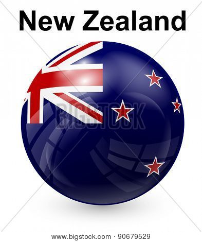new zealand official state flag