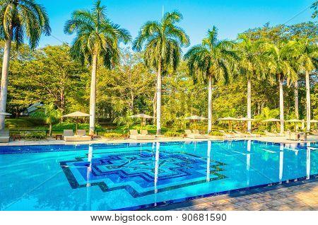 Deck chairs and high palm tree Beruwala, Sri Lanka
