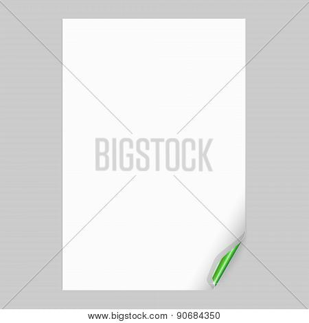 Empty Paper Sheet with Green Curled Corner. Vector Illustration