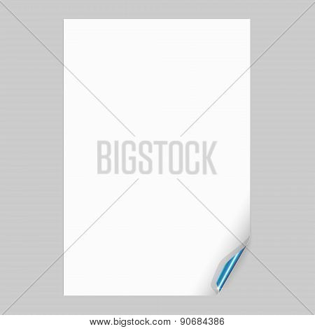 Empty Paper Sheet with Blue Curl Corner. Vector Illustration