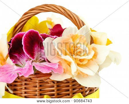 Beautiful flowers in basket close up