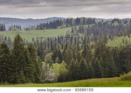 Mountain Landscape In Spring. Trail Leading Through The Green Valley To The Top Of The Hill In Beski