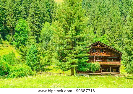 Wooden cabin with green pines, Austria, Alps
