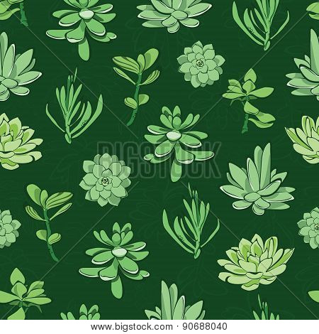 Vector fresh green succulents seamless pattern background