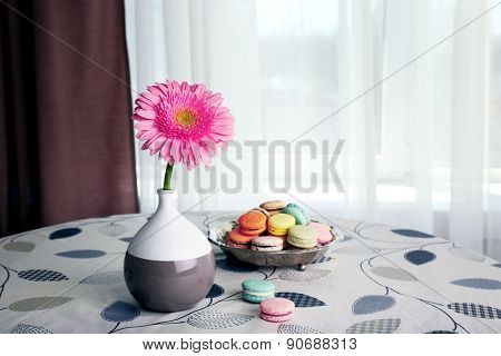 Color gerbera flower in vase and macaroons on table on curtains background