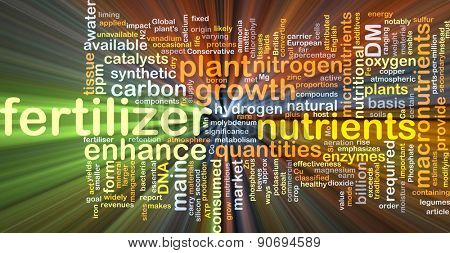 Background concept wordcloud illustration of fertilizer glowing light