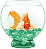 picture of goldfish  - Illustration of a happy beautiful goldfish with tiara in the aquarium - JPG