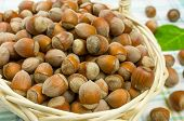 pic of cobnuts  - Hazelnuts in a wicker basket on the table - JPG