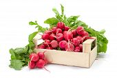 stock photo of crate  - Fresh harvested red radish in wooden crate - JPG