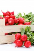 stock photo of wooden crate  - Macro of fresh red radish vegetable in wooden crate - JPG