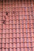 pic of red roof  - Broken clay tiles on a red roof - JPG