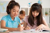 picture of classmates  - Classmates working in pair during the lesson - JPG