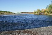 image of taimyr  - The river and its surroundings at the end of the summer - JPG