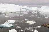 image of arctic landscape  - Arctic landscape in Greenland around Disko Island with icebergs - JPG