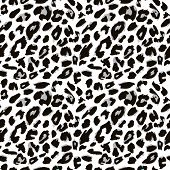 picture of mimicry  - Leopard skin pattern - JPG