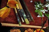picture of differential  - Artist brushes and flowers on a retro book concept of fine arts - JPG