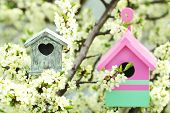 stock photo of nesting box  - Decorative nesting boxes on bright background - JPG