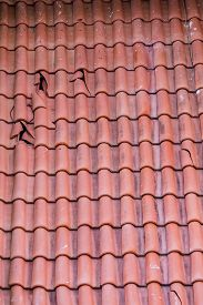 picture of red roof  - Broken clay tiles on a red roof - JPG