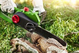 picture of man chainsaw  - man  - JPG