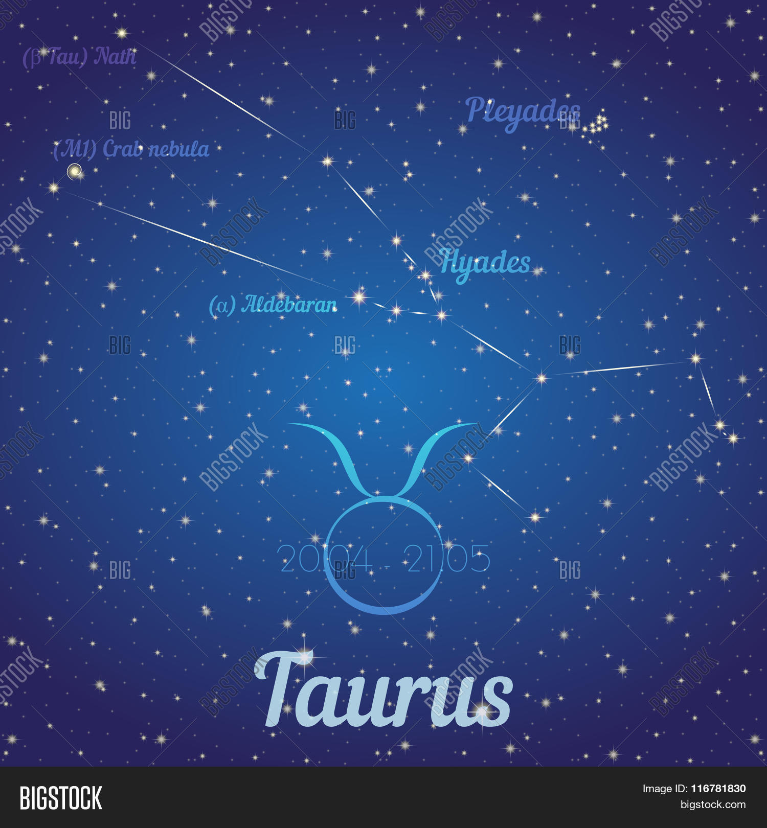 Zodiac Constellation Taurus - Vector & Photo | Bigstock