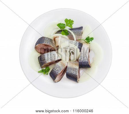 Sliced Pickled Atlantic Herring On A White Dish