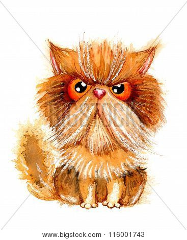 Hand Drawn Watercolor Illustration Without Tracing. Grumpy Persian Cat.