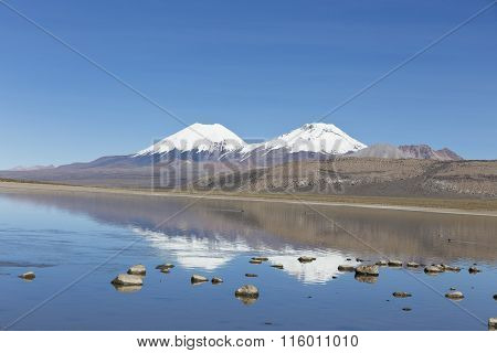 The Sajama National Park In Ranger Of Bolivia-