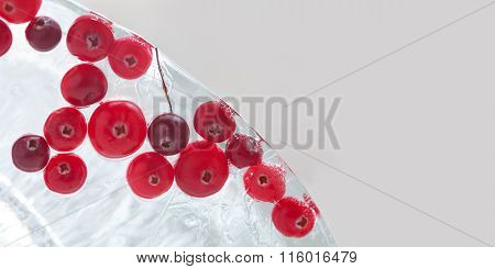 Frozen red berries. Forest cranberry in piece of ice. macro view. copy space