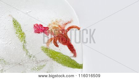 Frozen pomegranate flower with green leaf, seeds in ice cube. macro view. copy space