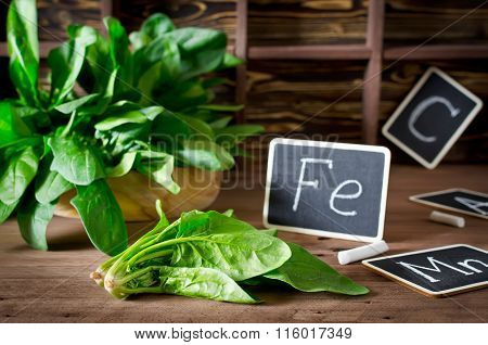 Spinach Rich In Vitamin C, Manganese And Iron